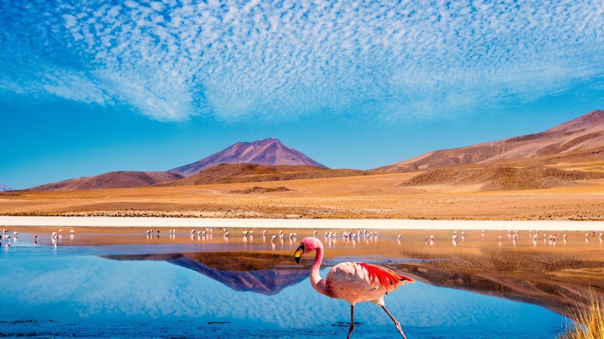 Bolivia vacation