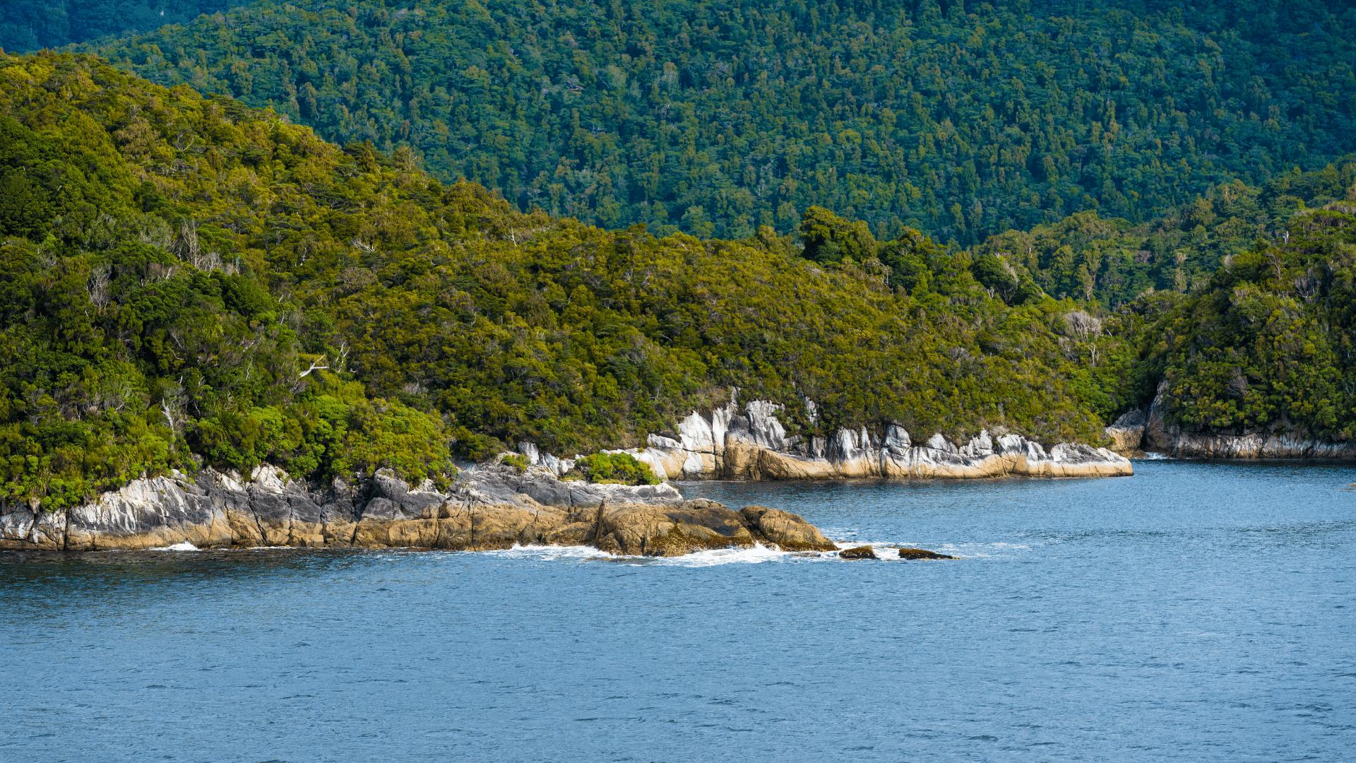 Dusky Sound cruise New Zealand