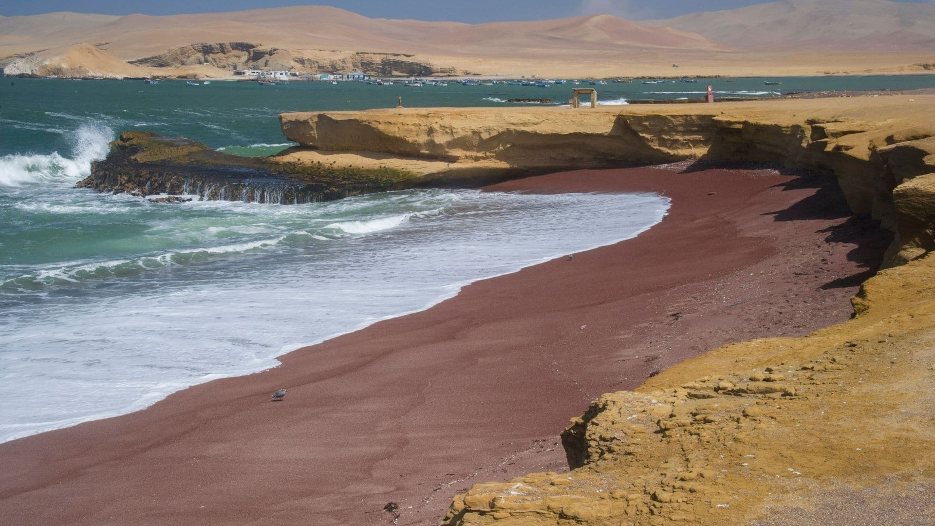 Things to do in Paracas