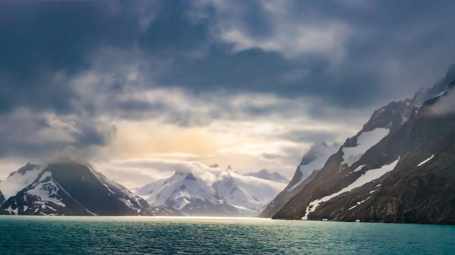 South Georgia Falkland Islands