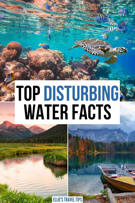 disturbing water facts